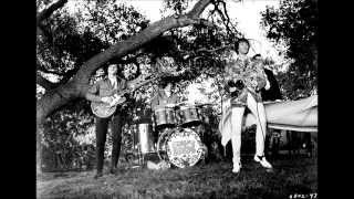 The Seeds - The gypsy plays his drums