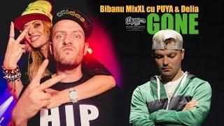 Смотреть клип Bibanu Mixxl Feat. Puya & Delia - Gone