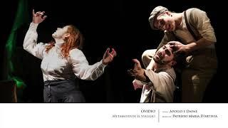 Patrizio Maria D'Artista - Apollo e Dafne (Ovidio Metamorfosi il viaggio)