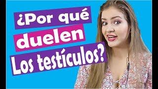 Por qué duelen los testículos? Responde Lina Betancurt