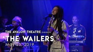 The Wailers - Ambush In The Night