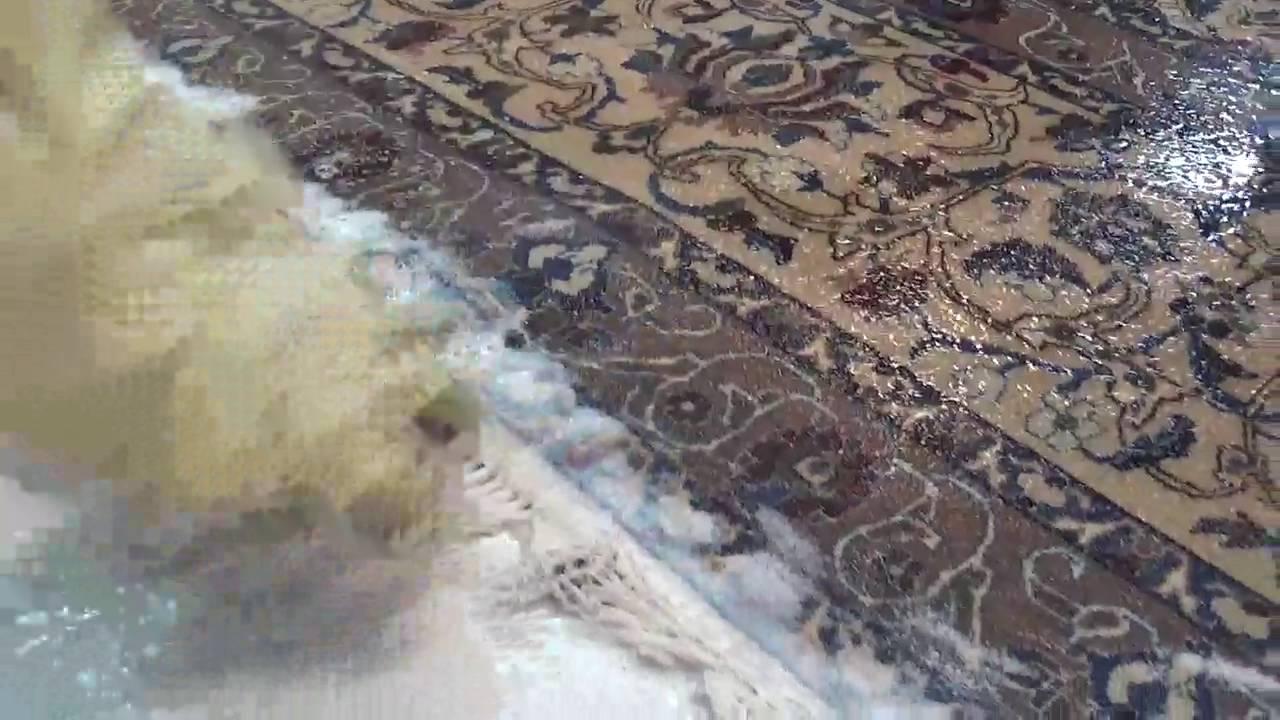 Limpieza de flecos alfombra persa alfombras rahmati 18 for Alfombras persas madrid