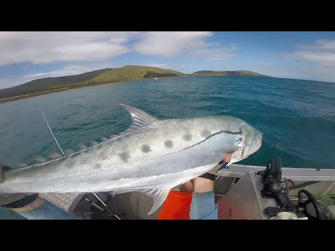 North Queensland Sport Fishing