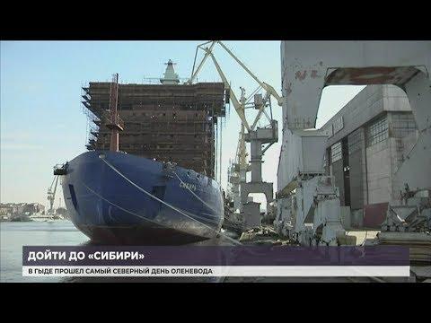 Смотреть В Питере продолжается строительство ледокола «Сибирь» онлайн