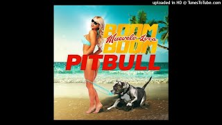 Скачать Pitbull Muévelo Loca Boom Boom AUDIO