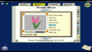 Toontown- all the flower combinations