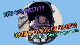 [Sub][연년생육아브이로그] 시카고 아쿠아리움 다녀오…