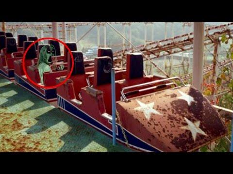 10 Creepiest Abandoned Amusement Parks