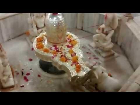 Lord Shiva Lingam Shingar