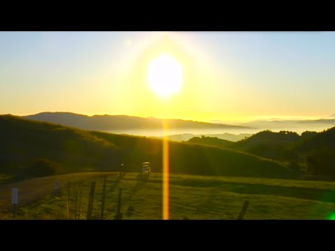 Welcome to solarcity NZ