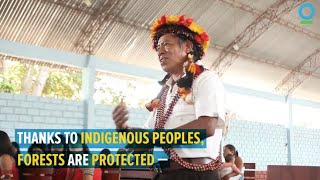 Indigenous Rights and Forest Protection in the Amazon