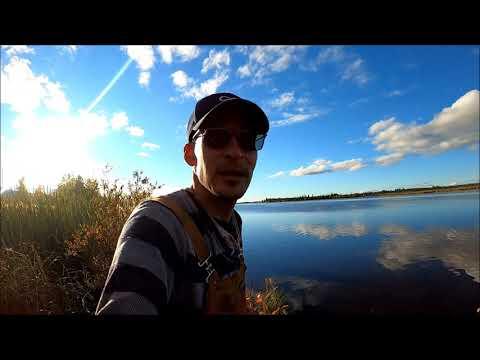 Fall Moose Hunt Part 2 moose Camp