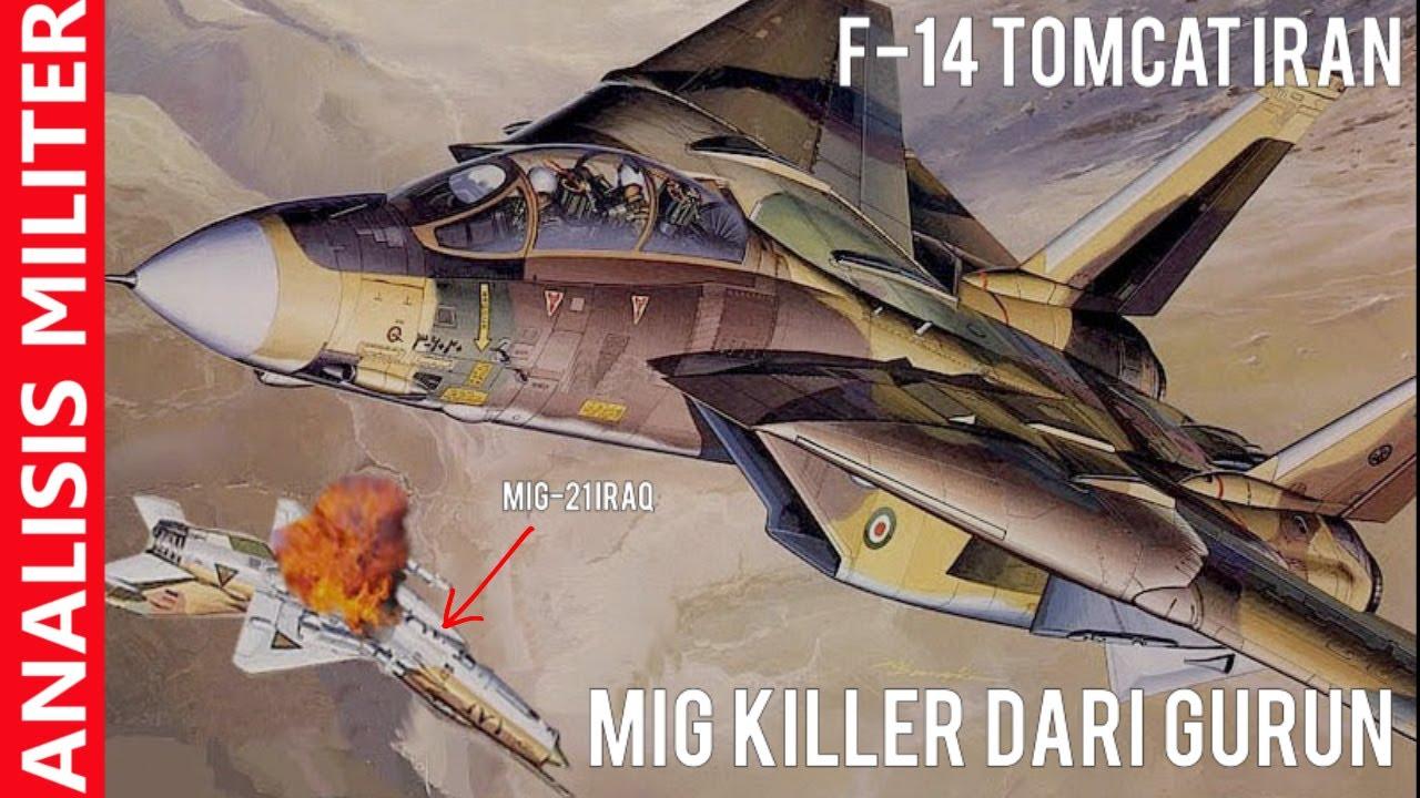 Kawan Jadi Lawan, Kisah Dramatis Pesawat Tempur F-14 Tomcat Iran