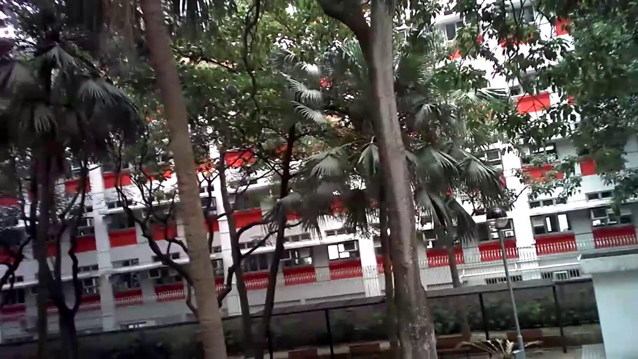 JJRC H47 ELFIE+ 航拍畫質實測 @ 公園   DronesPlayer.com - YouTube