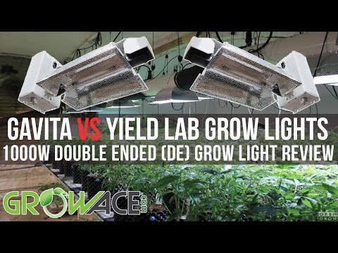 1000w DE Double Ended Gavita vs Yield Lab Grow Lights REVIEW