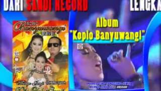 Album Koplo Banyuwangi (Official Music Video)