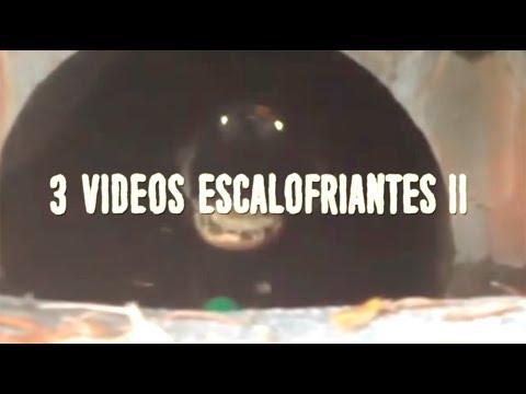Download 3 videos escalofriantes II
