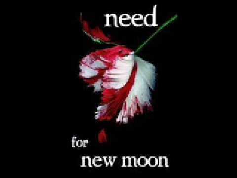 Hana Pestle - Need + lyrics