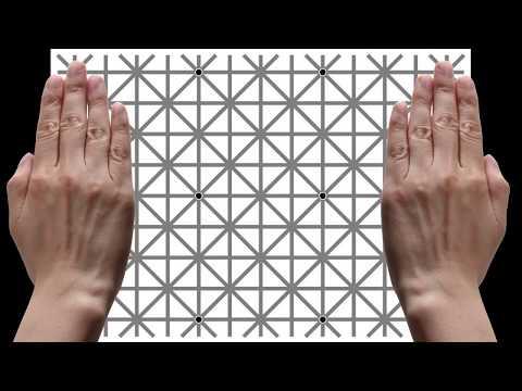 99% 啶侧啶� 啶ㄠす啷�啶� 啶い啶� 啶膏啶む 啶 啶曕啶ぞ 啶灌 , 啶曕啶ぞ 啶嗋お啶曕 啶い啶� 啶侧啶� ? Best Optical Illusion Game