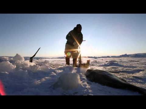 Traditional Inuit culture in Greenland HD