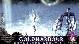 ★ Elder Scrolls Online ★ - Skyshards @ Coldharbour