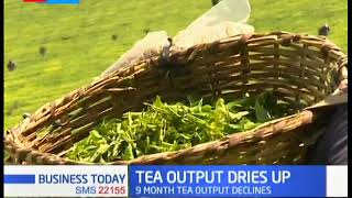 Tea Output Bries Up: 9 Month teat output decline