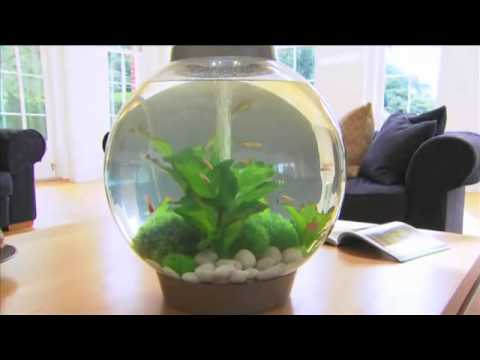 BiOrb Aquariums - Bradshaws Direct