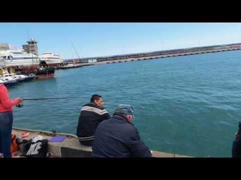 Рыбалка в Ялте
