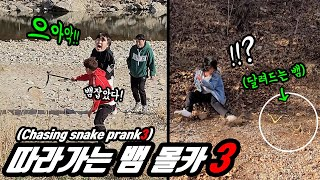 Prank) Chasing snake #3 Chicken but cute Hood Girls' reactions when they encounter a wild snake!