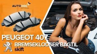 PEUGEOT 407 manual gratis downloade