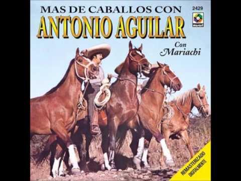 Antonio Aguilar, El Negro Y el Tordillo.wmv