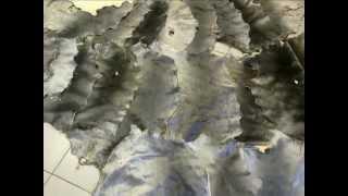 Шкуры нерпы выделанные(Сайт: www.arktur-22.ru Компания ARKTUR-22 предлагает Вам купить Шкуры нерпы выделанные Оптом и в розницу. Оплата:..., 2012-08-24T09:46:53.000Z)