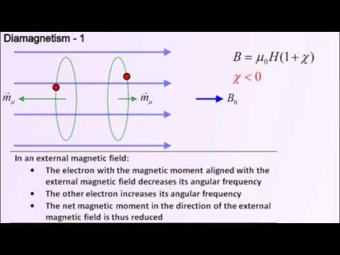Diamagnetism - MM 019
