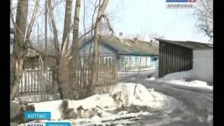 """Котласский приют для животных  """"Право на жизнь"""" остался без городского финансирования"""
