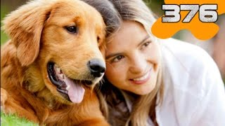Datos curiosos: Las mascotas y tu personalidad | (What the fact! - 376) Astrid Vlogs Datos Curiosos