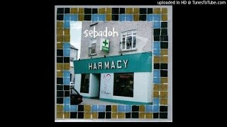 Sebadoh - Beauty of the Ride