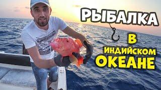 Рыбалка в индийском океане! Офигел от такой рыбалки и рыбы.