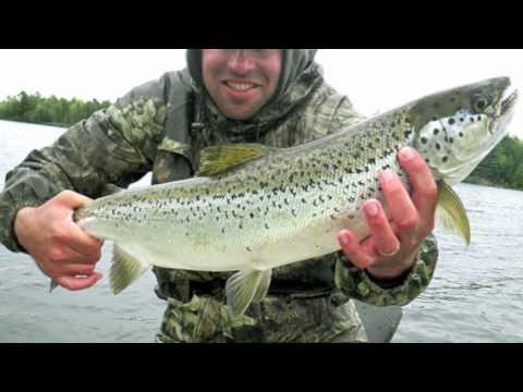 Quabbin Reservoir Landlocked Salmon Fishing, Massachusetts