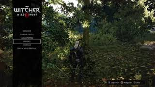 The Witcher 3: Wild Hunt_20181003232247