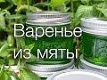 Варенье из мяты sk рецепты