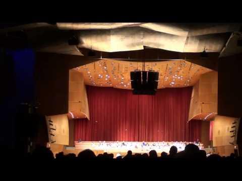 2013 0706 Millenium Park - Dvorak New World Symphony Chicago, IL
