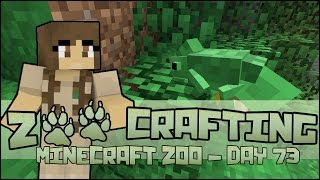 Zoo Crafting! Chameleon Exhibit Escapades!! - Episode #73 | Season 2