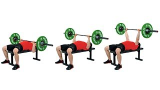 The Bench Press
