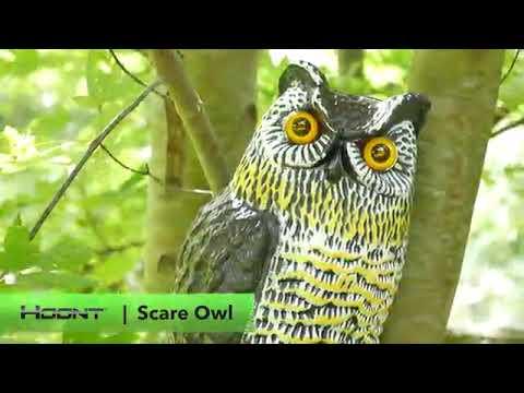 Solar Owl : Solar Animal Light