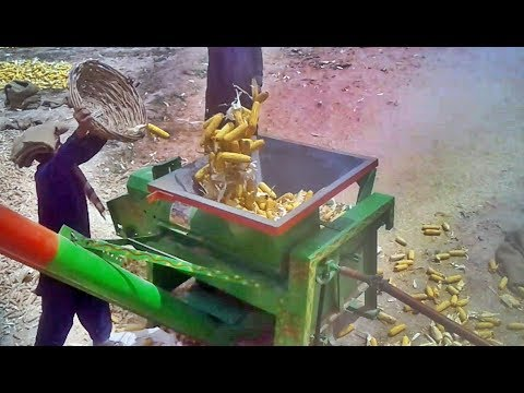 Corn Removal Machine With Pto Al Ghazi Tractor | Maize Thresher | Best Corn Shaller Machine