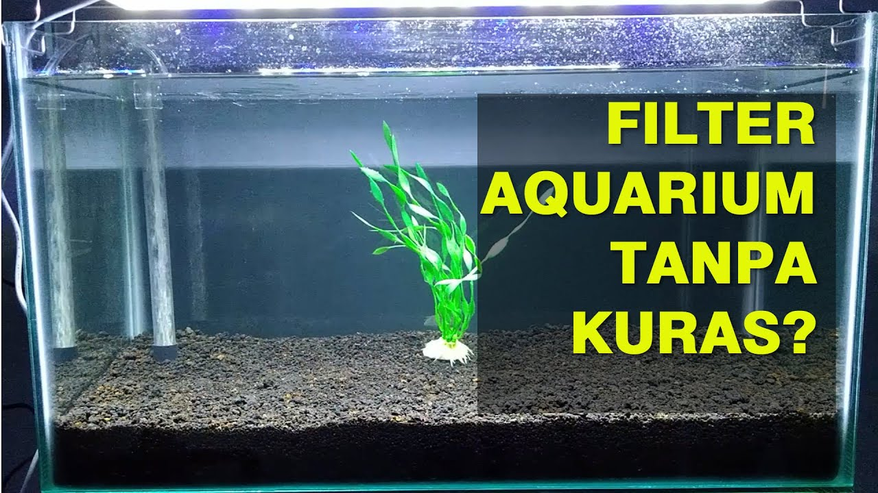 Filter Undergravel Aquarium Tanpa Kuras