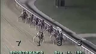 1991 Sportsman's Park PLUM PEACHY Grandma Ann  Final 3yo Filly Pace Walter Paisley