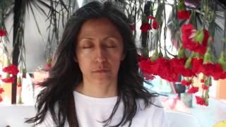Parábola  III, Penal y bandera. Elvira Santamaría