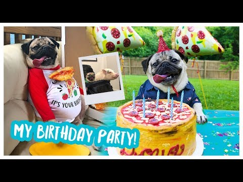 Doug The Pug's Birthday Party