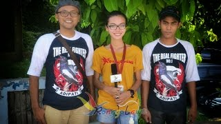Rahasia Adipati - Burung Gacor Mahal Indonesia